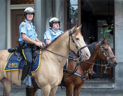 NOPD Mounted Unit to Receive Donation from Hermes-BTP